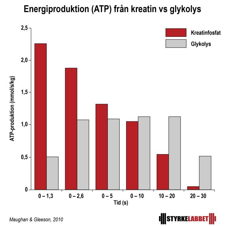 ATP-produktion från kreatin vs glykolys