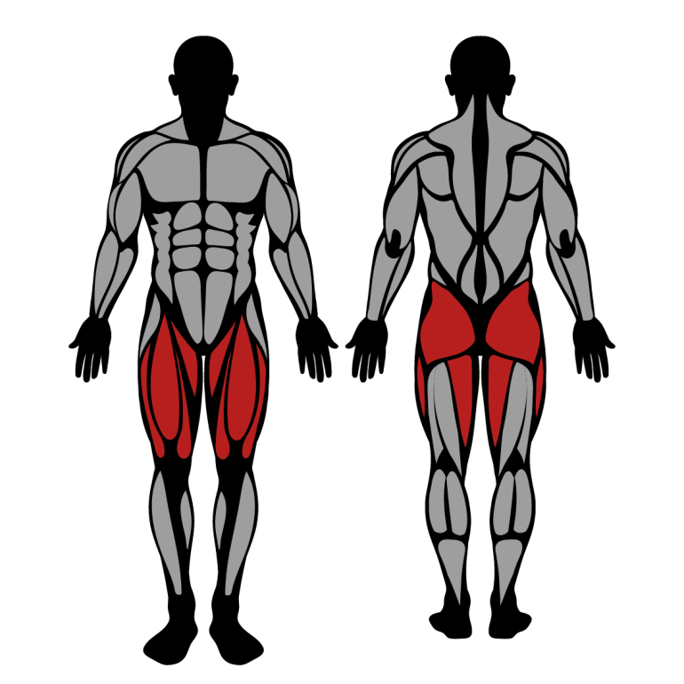 Muskler som tränas av hack squat i maskin