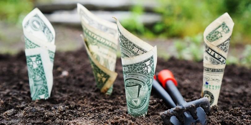 Dinheiro plantado no chão para dar a ideia de liberdade financeira.