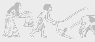 Homem e mulher trabalhando na agricultura no Egito antigo, mostrando que naquela época a família trabalhava junto e a relação mulher e dinheiro era mais bem administrada.