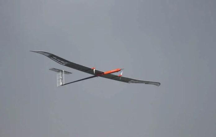 LG Lion glider