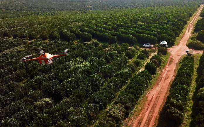 AgTech Firm SeeTree Raises $30M in Sequence B Funding Spherical to Scale Globally and Broaden into New Crops - sUAS Information 1