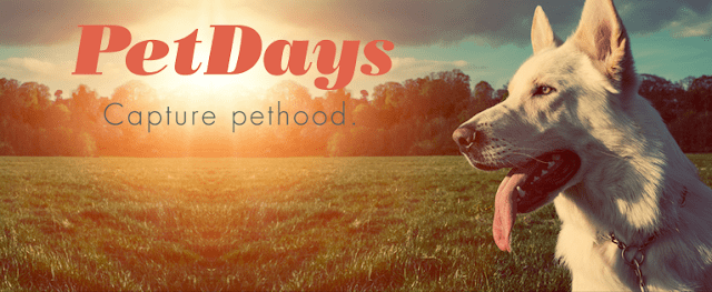 PetDays: Instagram for Your Pets