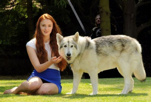 sansa-and-lady