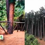 A partir del jueves 3 de septiembre abren senderos ecológicos para que los bogotanos se reencuentren con la naturaleza