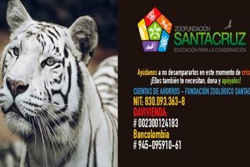 """""""Vamos todos al zoológico"""", campaña de protección y conservación animal de la Zoo Fundación Santacruz y Suba Alternativa"""
