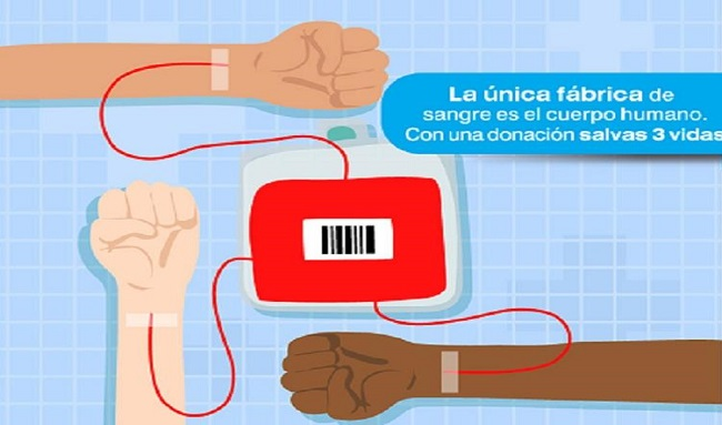 Secretaria de salud sigue lineamientos para la donación de sangre