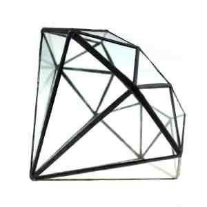 glass jewel terrarium succulent
