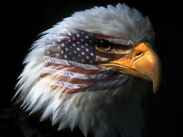 https://i1.wp.com/www.submergingmarkets.com/photos/uncategorized/eagle_in_war_paint_1.jpg