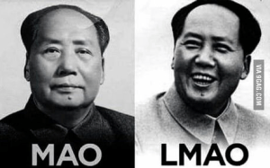 mao lmao