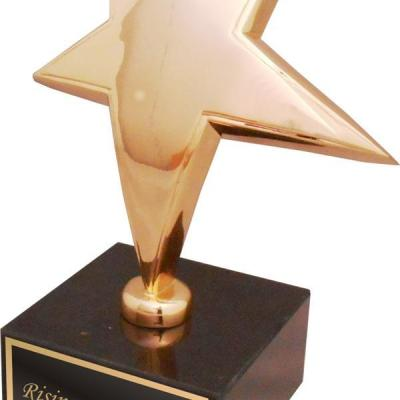 Gold Rising Star Award