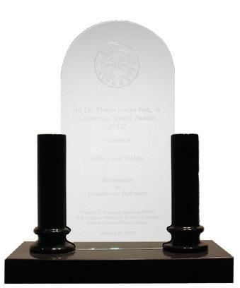 Black Marble Pillar Award