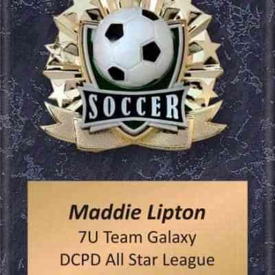 Impact Soccer Plaque