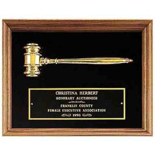 shadowbox plaque with gold gavel