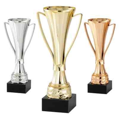 Modern Cup Award