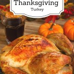 7 Tips for a Moist Thanksgiving Turkey