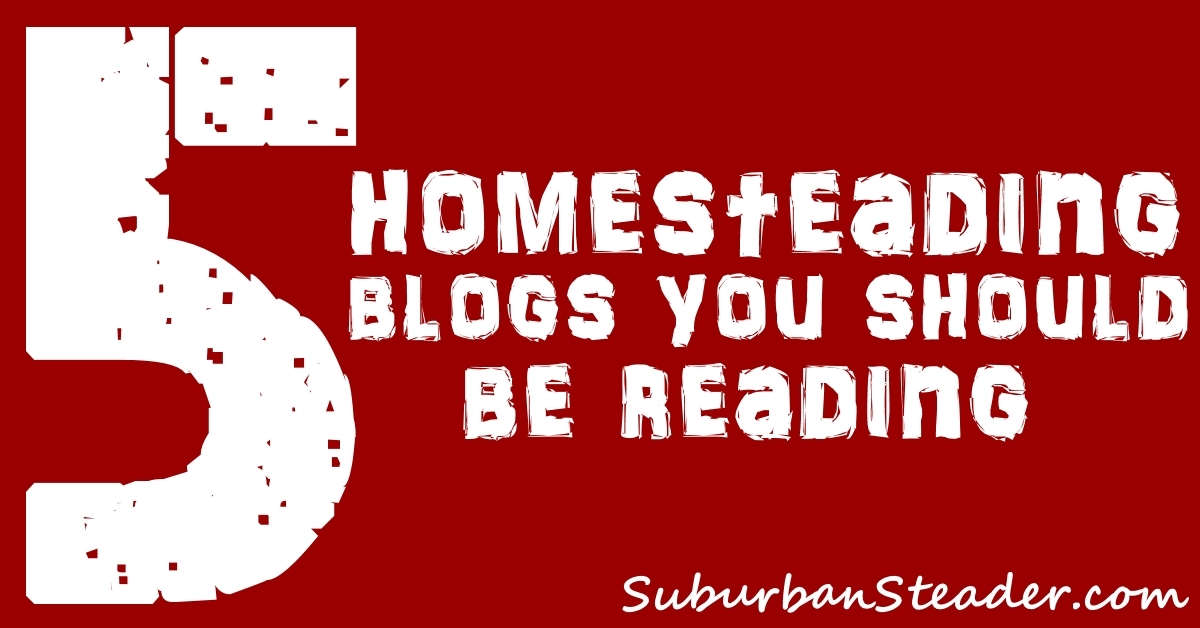 5 Homesteading Blogs You Should Read | Suburban Steader