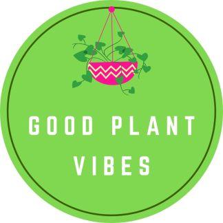 Good Plant Vibes