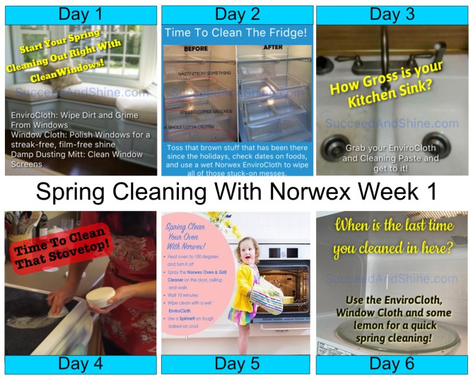 Spring Cleaing With Norwex Week 1