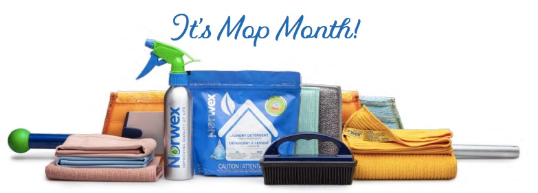 norwex mop system, mop, norwex, north carolina,