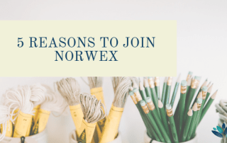 Norvex, clean home, non-toxic, friendship, business, positive