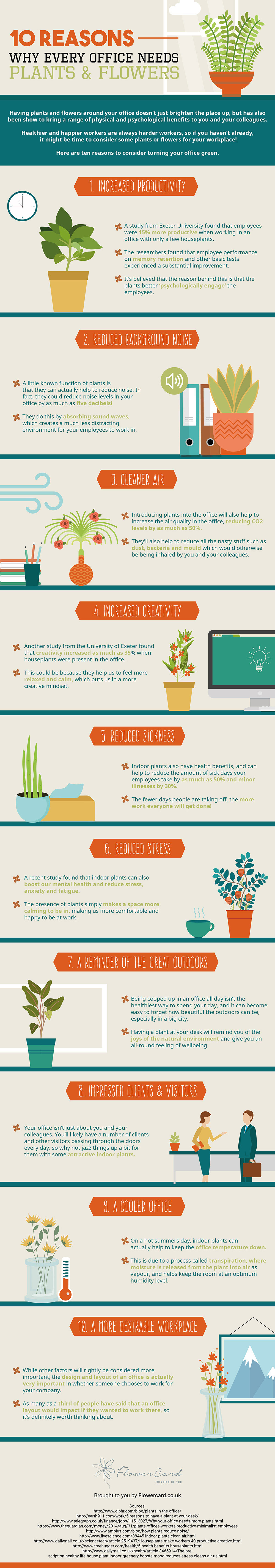 10 Reasons Why Every Office Needs Plants and Flowers