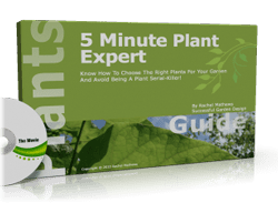 Plant Expert cover