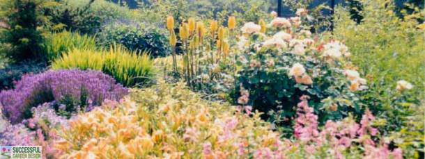 Plant design tips and plant choosing tools for Successful garden design