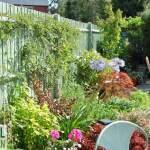 Garden fence lowdown – Part 2