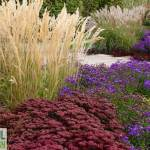 Successful Garden Design Tips – Planting with grasses