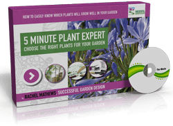 The 5 Minute Plant Expert – Mini-Course
