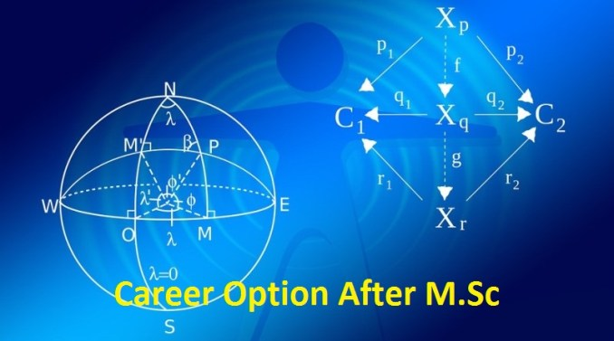 career option after m.sc in hindi