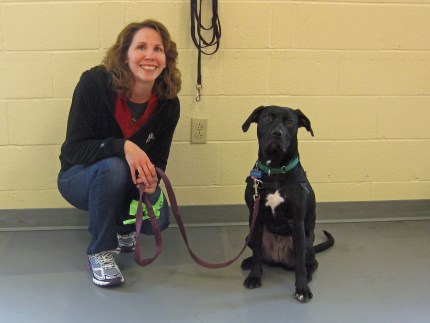 Lainie B.A. with her handler Kimm!  I wish I had a better photo, Lainie never looks this serious about anything, ever.