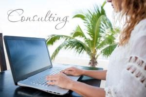 Success Rebelution - Consulting - Debi Lee