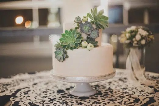 Succulents for Four Layer Cake   Urban Succulents cake 5