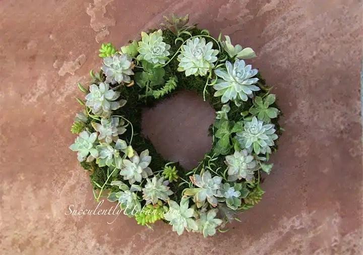 Succulent Wedding Bouquets Centerpieces Amp More Urban