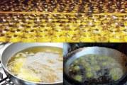 ضبط مصنع لزيوت الطعام الفاسدة بمايو