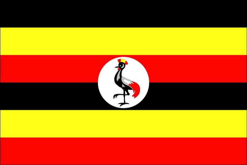 د/ عادل الصادق المكي : أسمح زول في يوغندا