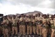 منح وسام الإنجاز للقوات الخاصة السودانية وترفيعها للواء