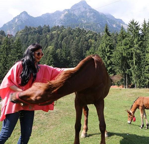 """بالصورة .. حصان """"يعض"""" هيفاء حسين في رومانيا"""