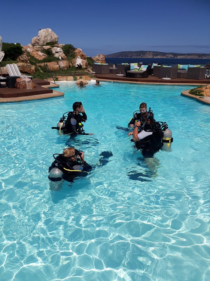 SCUBA training in pool