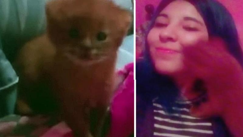 Elle pensait avoir adopté un chat: il s'agissait en fait d'un tout autre animal… (photos + vidéo)