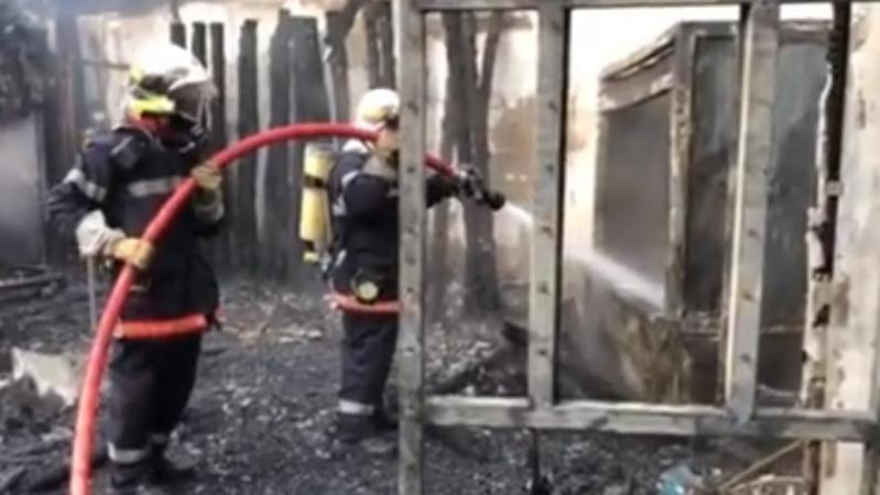 Des dizaines d'animaux périssent dans l'incendie d'un zoo en France