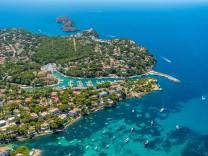Kriminalität: Riesenpudel verrät totgeglaubte Deutsche auf Mallorca