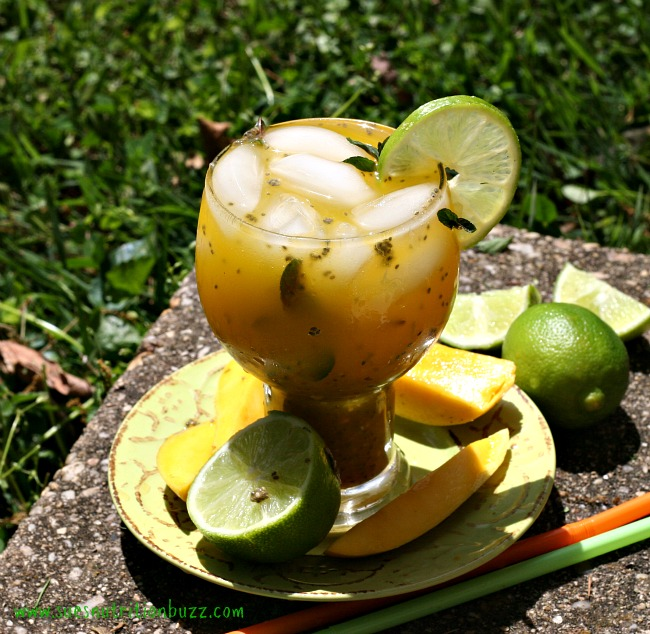 Mango Aqua Fresca3