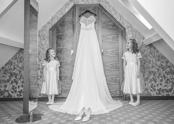 bridesmaids and dress