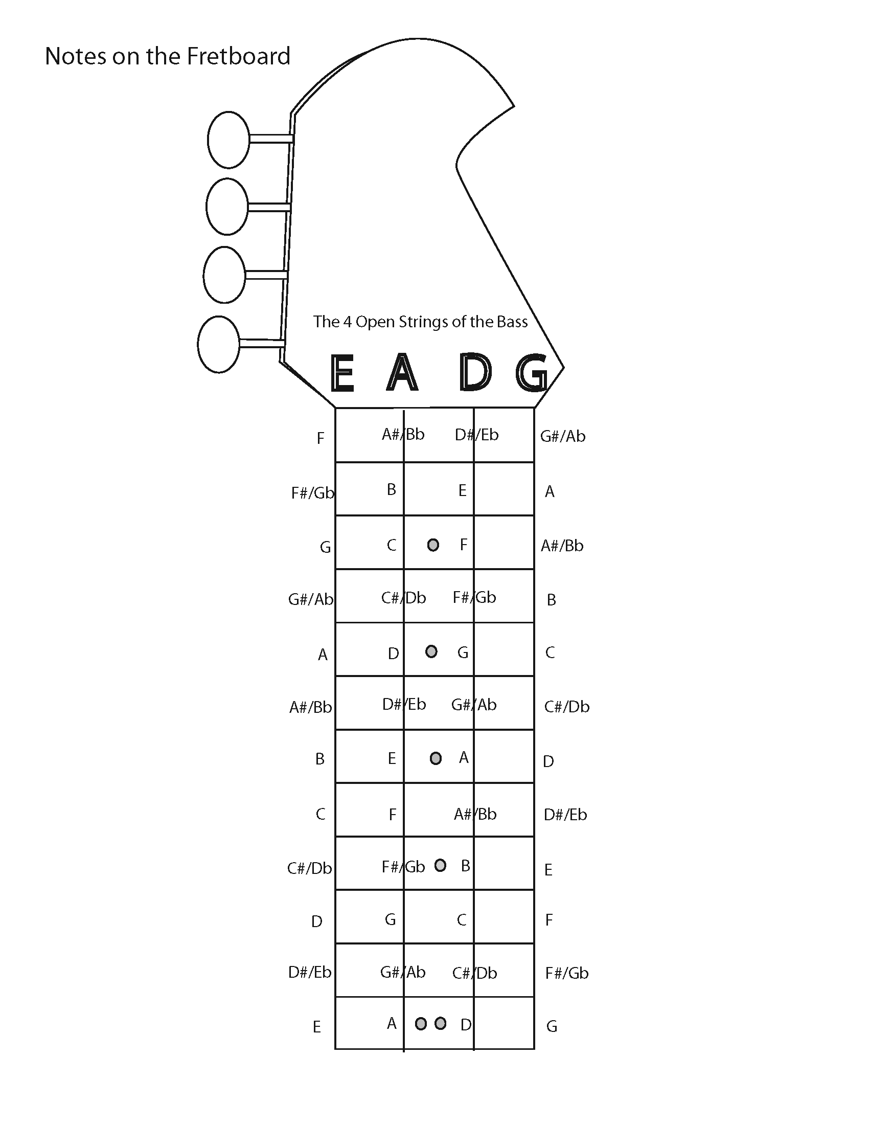 Bass Guitar Fretboard Notes Diagram Pictures To Pin On