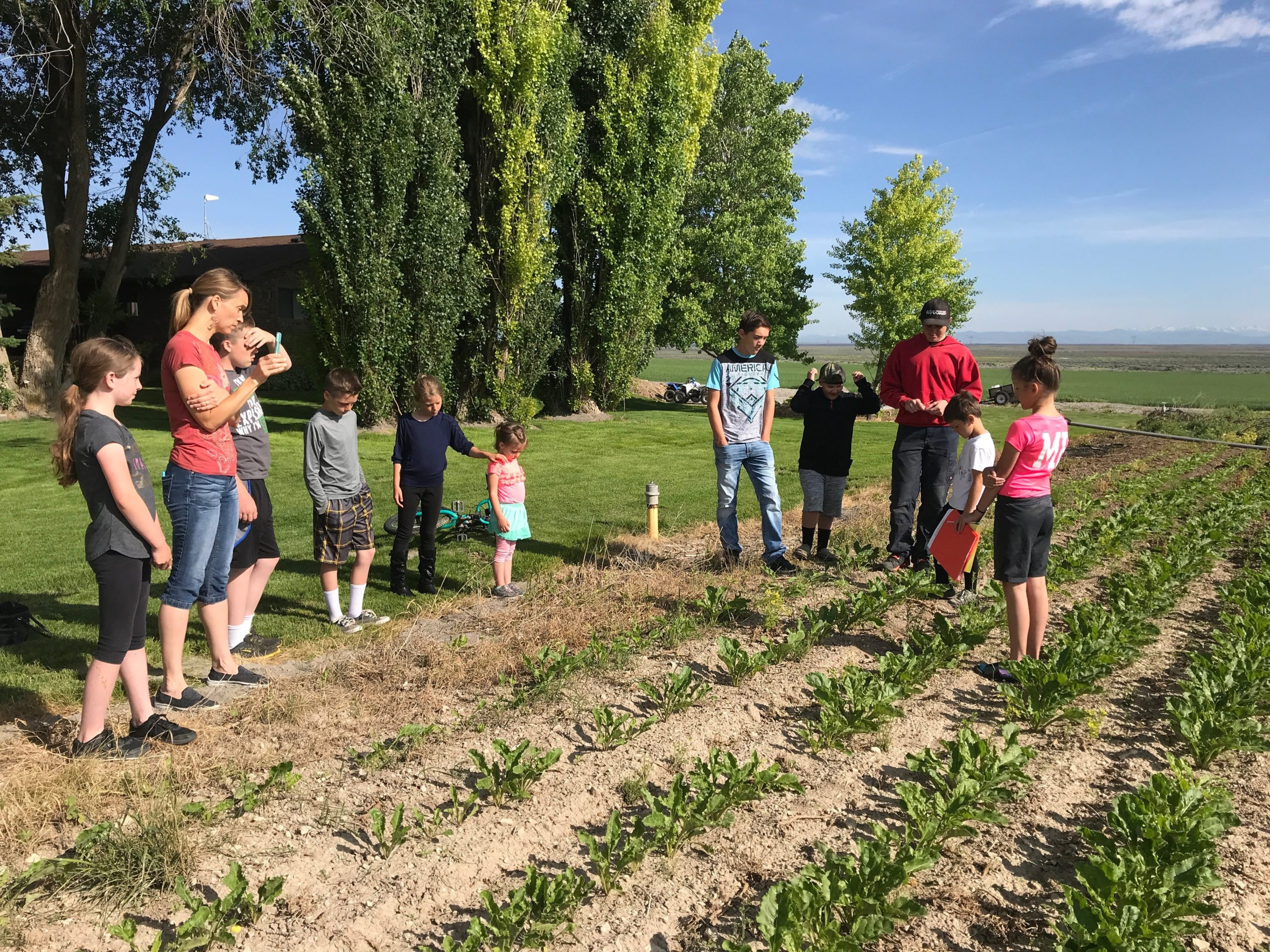 Mindy's 2 kids learning about weeds in the sugar beets.