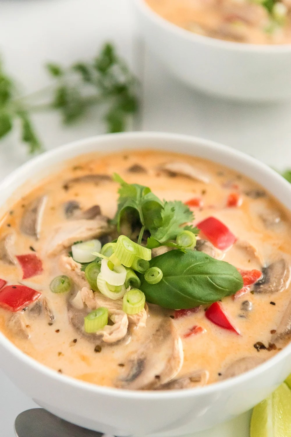 Close up photo of Chicken Coconut Soup (aka tom kha gai) in a white bowl.