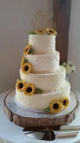 a-sunflower-1